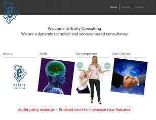 Entity Consulting
